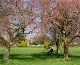 Image of the grounds at Ham Manor Golf Club