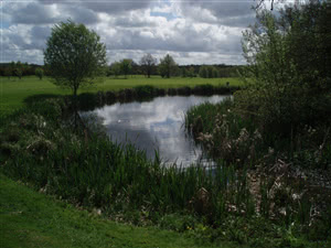 Image of the grounds at Blacknest Golf Club