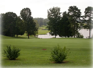 Image of the grounds at Dead Horse Lake Golf Club