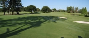 Image of the grounds at Palmetto Pines Golf Course