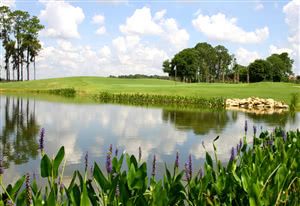 Image of the grounds at Kissimmee Golf Club