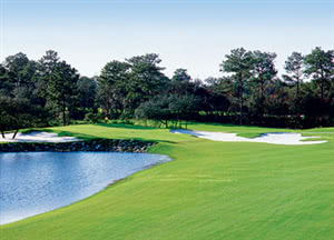 Image of the grounds at Diamondback Golf Club