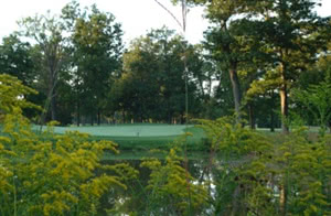 Image of the grounds at Earlywine Golf Course