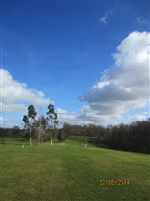 Image of the grounds at Chiddingfold Golf Club