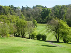 Image of the grounds at Blairbeth Golf Club