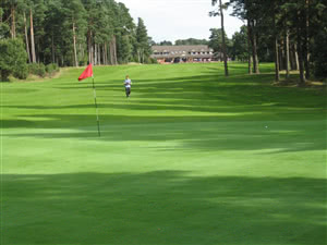 Image of the grounds at Pine Ridge Golf Centre