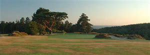 Image of the grounds at Hindhead Golf Club