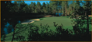Image of the grounds at Rim Golf Club, The