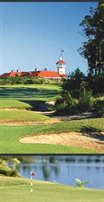 Image of the grounds at Terrey Hills Golf & Country Club