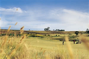 Image of the grounds at Macquarie Links International Golf Club