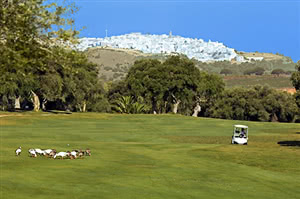 Image of the grounds at Montenmedio Golf & Country Club