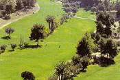 Image of the grounds at Club de Golf Don Cayo