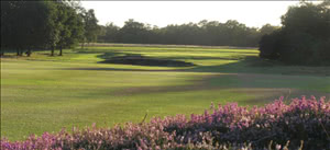 Image of the grounds at Walton Heath Golf Club